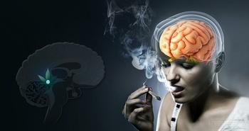 吸烟对大脑的危害示意图