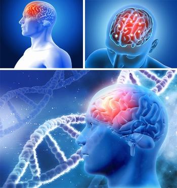 蓝色头部大脑医疗ppt背景图片