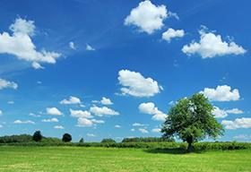 蓝天白云绿地风景图